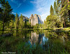 (Steven Barrows) Tags: cathedralrocksreflection cathedralrocks yosemite yosemitenationalpark landscape yosemitevalley waterreflection stitched nationalpark usnationalpark ngc meadowpond meadow reflection california cathedralrocksyosemite yosemitecathedralrocks