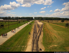 20170630_14 Train tracks & visitors | Auschwitz concentration camp, Poland (ratexla) Tags: ratexlasinterrailtrip2017 interrail auschwitz 30jun2017 2017 canonpowershotsx50hs interrailing eurail eurailing tågluff tågluffa tågluffning travel travelling traveling journey epic europe earth tellus photophotospicturepicturesimageimagesfotofotonbildbilder wanderlust vacation holiday semester trip backpacking tågresatågresor resaresor europaeuropean sommar summer ontheroad oświęcim poland polska auschwitzconcentrationcamp concentrationcamp ww2 secondworldwar war nazism racism bigotry history violence auschwitziibirkenau museum traintrack traintracks railway railroad järnväg tågspår train trains railroadearth theholocaust förintelsen koncentrationsläger