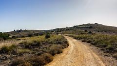 CAMINANDO POR LOS CAMPOS DE ARGANDA (bacasr) Tags: path hicking colinas walking hills senderismo valle spain campos way caminando trail fields madrid camino españa argandadelrey valley