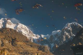 Autumnal Reflection of Ultar Sar 7,388 m