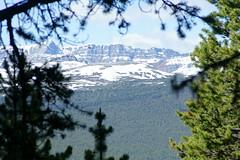OpalHiills00029 (jahNorr) Tags: summertrip 2012 canadaalbertajaspernationalparkopalhills