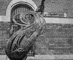 Rory Gallagher Memorial - Cork (phil_king) Tags: rory gallagher guitarist musician music rock blues statue memorial place square cork city irish republic ireland eire monochrome blackandwhite black white