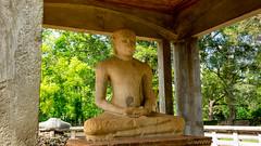 Samadhi Buddha (4th-century) - Anuradhupura (Jacque & John) Tags: srilanka anuradhapura ancientruins buddhisttemple