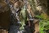 Metallic Salmon Art (Scott 97006) Tags: art metal salmon water waterfall