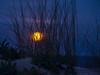 Full Moon Rise 4 (caralan393) Tags: moon moonrise night grass dof blue