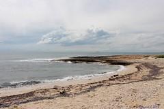L'Invasion de Vélelles (Bernard C Photography) Tags: canon france provence paca provencealpescôted'azur bouchesdurhône martigues carro côtebleue vélelles plage