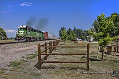 Cascade Green at Niwot (Colorado & Southern) Tags: bnsfrailway bnsf burlingtonnorthern emdgp39e emdgp382 local trains train railfanning railroad railfan railway railroads railroading rail rr railroadtrack colorado coloradorailroads coloradotrains