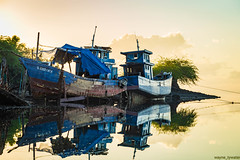 _MG_1734 (waynetywater) Tags: boat sea water sky sunrise ngc phillipines cebu tree blue sun light landscape photography ocean bay national geographic nationalgeographic