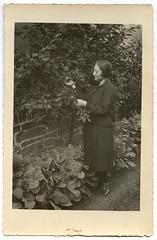 - (Kaïopai°) Tags: kirschbaum kirsche kohl garten garden dame frau ernte harvest kleid fashion cherrytree cherries kirschenpflücken kirschen