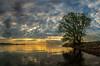 Bodensee (Oliver Noggler) Tags: bodensee fusssach abend wolken wasser stimmung sonnenuntergang sonya99