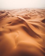 Empty Quarter. (Bokehm0n) Tags: landscape nature vsco explore flickr earth travel folk 500px sandstorm desert white sands sand dune dunes horizon deadsea arid mesquite flat dubai abu dhabi