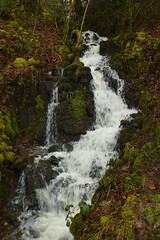 Small Waterfall (CoasterMadMatt) Tags: sgwdrhydyrhesg2018 mellincwrtfalls2018 rhaeadrmelinycwrt2018 melincourtwaterfall2018 sgwdrhydyrhesg mellincwrtfalls rhaeadrmelinycwrt melincourtwaterfall sgwd rhydyrhesg mellincwrt falls rhaeadr melin cwrt melincourt waterfall waterfalls fall waterfallsofwales welshwaterfalls waterfallcountry riverneath afonneath river rivers neath neathattractions resolfen resolven bwrdeistrefsirolcastellneddporttalbot bwrdeistref sirol castellnedd port talbot decymru southwales de cymru south wales europe landscape naturallandscape landscapes britain greatbritain gb unitedkingdom uk march2018 winter2018 march winter 2018 coastermadmattphotography coastermadmatt photos photography photographs nikond3200