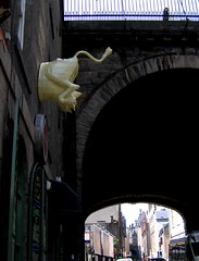 flatulent cow - Cowgate, Edinburgh