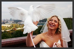 White dove (Loise Lane) Tags: 1on1peoplephotooftheday