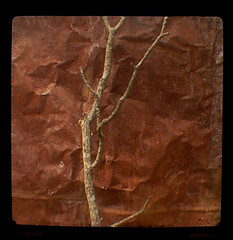 rusty (uhoh over) Tags: red metal shed twig stick rusting shack viewfinder ttvf