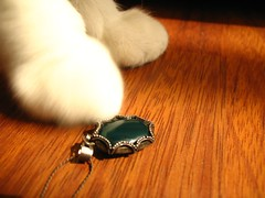Save the Green (Marchnwe) Tags: brown green cat silver necklace paw floor