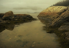 The crossing (IrenaS) Tags: mist canada fog ferry landscape boat bravo quebec tadoussac