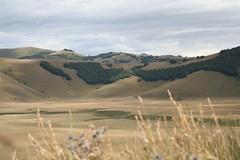 Altopiano di Castelluccio (gareth_fr) Tags: italy umbria castelluccio