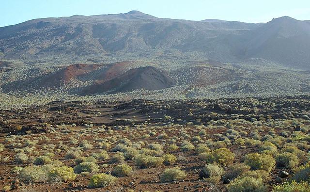 Desierto de Orchilla II