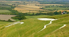 White Horse, Uffington - by dachalan