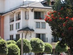 IMG_3649 (muzzanese) Tags: santacruz montereyaquarium
