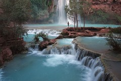 Solitary oasis ({ Flex }) Tags: arizona waterfall hiking grandcanyon az canyon havasu canoneosdigitalrebelxt supai havasupai canondigitalrebelxt havasufalls abigfave