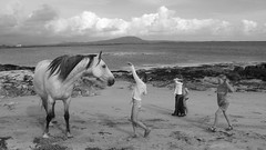 Horse and children on irish beach (Ingiro) Tags: ireland horse children interestingness connemara irlanda ingiro interestingness70