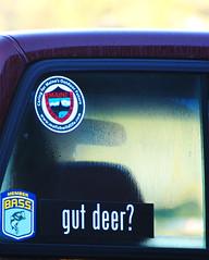 Gut Deer? (The_Kinkajou) Tags: glass michael gut bass outdoor rear maine www deer stewart future stupid com hunter bumpersticker member calling maines learngrammar ©2008 mefishwildlife