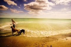 endless energy (littlelakey) Tags: beach dogs girl shots v111 outstanding emeraldislenc outstandingshots littlelakey outstandingshotshighlight atmosphericportrait endlessenergy