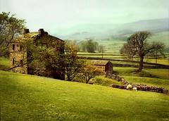 yorkshire dales spring (jody9) Tags: england film topf25 mediumformat landscape bravo yorkshire springtime yorkshiredales pentax6x7 kkfav utata:color=black utata:project=uplandscape