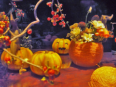 Japanese Pumpkin Autumn night