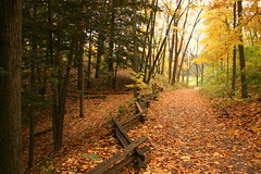Fall walk (Kathy~) Tags: autumn trees friends red fall colors leaves yellow fence river bench leaf top20np path walk michigan annarbor super cw abigfave superhearts thechallengegame challengegamewinner herowinner