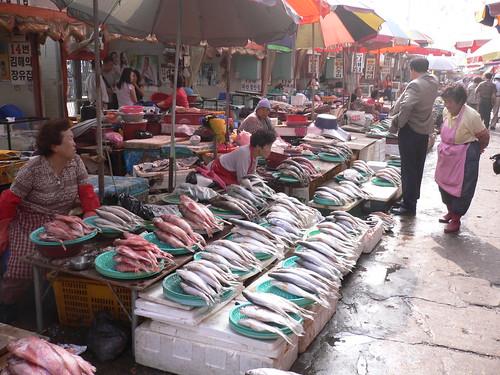 Pusan - Jagalchi  자갈치 시장(남포동)
