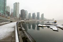 Snow Day (Jason Pineau) Tags: snow coalharbour cyhc dehavilland dhc3 dhc3t otter floatplane seaplane harbourair vancouver downtown winter snowing bc britishcolumbia
