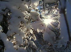 Peeking through (Micky**) Tags: winter sun snow ice minnesota micky peekingthrough instantfave theworldthroughmyeyes abigfave impressedbeauty zlimen
