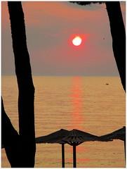 coucher de soleil sur l'adriatique (busylvie) Tags: extérieur plage arbres parasol couleurs ciel mer adriatique coucherdesoleil reflets vagues barque nuages lueurs oiseau