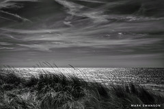 Beach Grass blowing in the breeze (mswan777) Tags: dune beach sand wind evening reflection sunlight nature outdoor silhouette horizon seascape scenic monochrome black white nikon d5100 nikkor 1855mm sky cloud