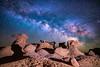 A Little Husky (Bryce Bradford) Tags: night sky stars milkyway galaxy utah husky fursuit nikon d800e sigma 24mm f14