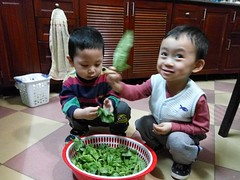 0213 (ruoi_men) Tags: cousin family love funny childhood children ak ankhanh benho brothers