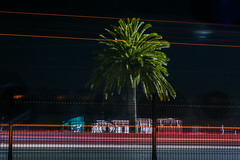 shipment is going to be late (pbo31) Tags: oakland eastbay alamedacounty baybridge 80 bridge night black may 2018 spring boury pbo31 nikon d810 color lightstream motion traffic roadway highway palm tree pedestrian bike path green prescott portofoakland