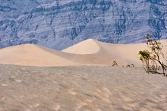 Sand dunes! (Bhargav Kesavan) Tags: wild hottest hot explore adventure roadtrip california deathvalleynationalpark deathvalley sand sanddunes desert