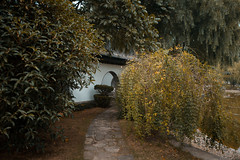 P O R T A L (Panda1339) Tags: 28mm architecture leicaq summiluxq shanghai 上海 sh jinshan garden trees autumn