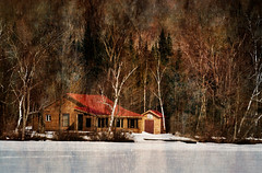 Winter Retreat (Knarr Gallery) Tags: cottage muskoka nikon d300 huntsville lakevernon lake snow ice darylknarr knarrgallery knarrphotography knarrgallerycom trees winter bush birch landscape