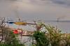 109 - Bastia le balai des ferries (paspog) Tags: bastia corse port vieuxport hafen haven mai may 2018 ferries