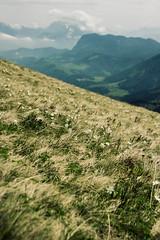 IMG_3202-13 (niggow) Tags: hiking wandern wanderung germany bavaria bayern deutschland österreich alps sonnwendjoch ht sonndwendjoch hinteres photoshop photography photographer photo photoshoot photographie wanderlust take more adventures ausflug mountains berge alpen bayrische