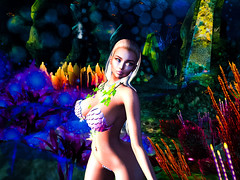 Alex- Sea-scapades Mermaid Musings (isabellajordynn) Tags: mermaid sea ocean coral beauty water colorful vibrance fluid soft swim classic subtle art artphotography fantasy underwater avatar avi secondlife virtual sensual erotic calm photo pic scales nature natural