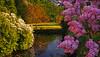 Castle Park Eutin (Ostseeleuchte) Tags: castleparkeutin schlosparkeutin eveningsun abendsonne abendlicht goldenlight germany deutschland schleswigholstein ostholstein 2018