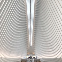 The Oculus. (_shawnp) Tags: usa ny pathstation newyork symmetry design architecture midtown manhattan newyorkcity oneworldtrade oculus nyc