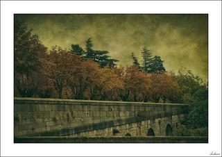 El retorno del otoño