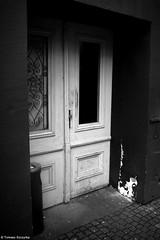 Zaginął kotek, ktokolwiek widział... / The kitten has gone missing, whoever saw... - Chorzów 2016 (Tomek Szczyrba) Tags: cat kitten miasto city town bw noir monochrome chorzów polska poland drzwi door photo street streetphoto silhouette sylwetka fotografiauliczna streetphotography